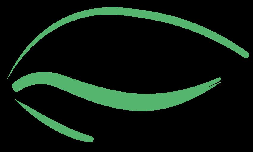 paupieres-vert