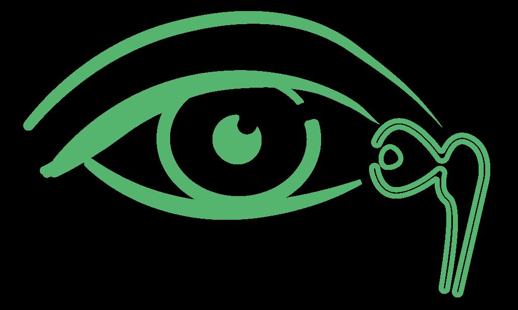 voie-lacrymale-vert
